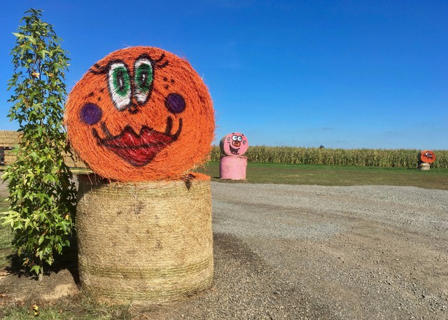 "About 150 painted hay bales dot the 57-acre visitors' farm, all happy and welcoming, says owner Brian Bauman: ""No scary faces, no red eyes, no sharp teeth."""