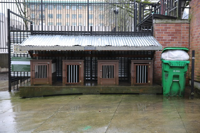 Dog kennels in the courtyard of Outside In, a homeless services nonprofit, in downtown Portland.