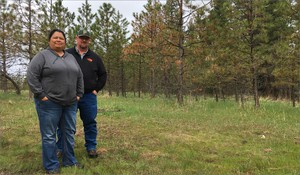 Gordy Schumacher and Cheryl Shippentower helped draft plans to manage the tribes' forests in different ways -- using more thinning and prescribed fires. They hope these methods will decrease the chances for a megafire in tribal forests.