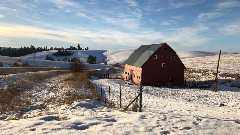 Snow-covered farm fields roll out outside of Kendrick, Idaho. Farmers are stumped on what to plant this coming spring, as many of their traditional dryland crops are priced below the cost of production right now.