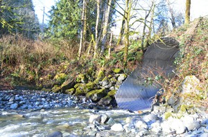 A culvert much too small for the creek it carries would cost millions to replace with a bridge.
