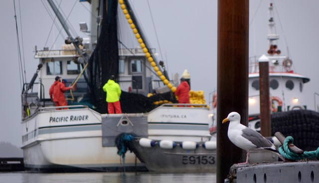 Charleston's commercial fishing landings are the third largest in Oregon. Some fishermen are concerned about bar safety with LNG vessels competing for safe crossing windows.