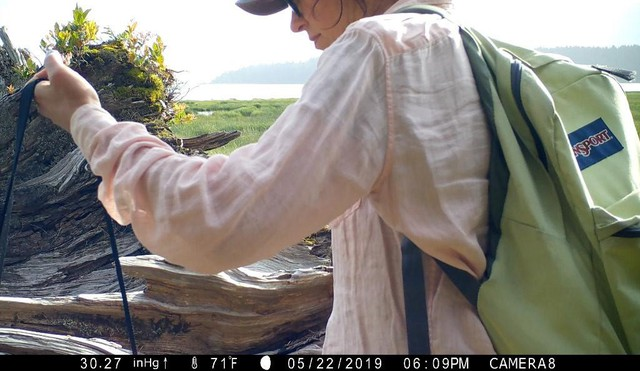 """Artist Malia Jensen created """"Nearer Nature: Worth Your Salt"""" with help from the Oregon Community Foundation's Creative Heights grant."""