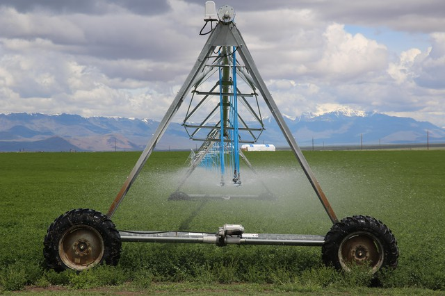 An irrigation pivot in Harney County on May 27, 2019. Spraying water at a lower height, so that less evaporates, is one conservation measure some farmers implemented in response to depleting groundwater levels.