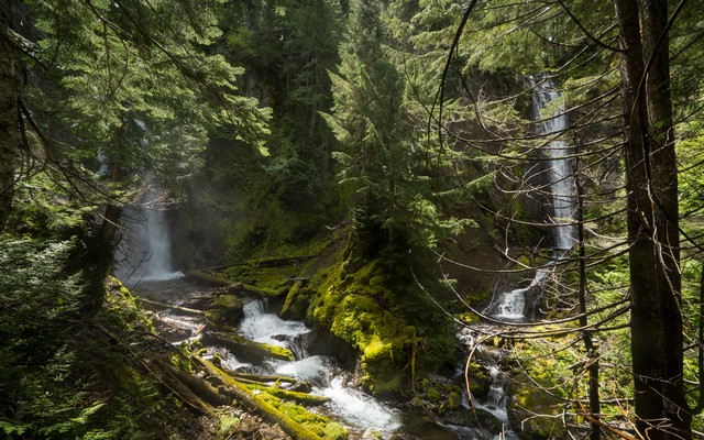 "After hiking to the top of the close to 100-foot waterfall, the scouting team looked down and discovered a second waterfall. It came from a separate stream, converging at the same spot as the other waterfall. Jared Smith and John Waller scrambled down the steep hillside to the base of these falls and named the place ""Shangri-La."""
