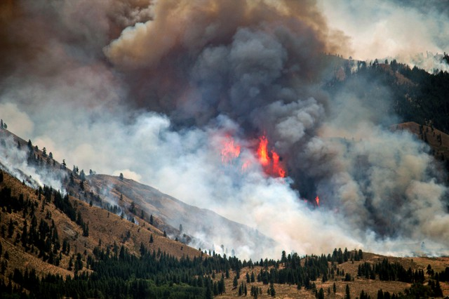 A wildfire, known as the Carlton Complex fire, burns out of control near Winthrop, Wash., July 18, 2014.