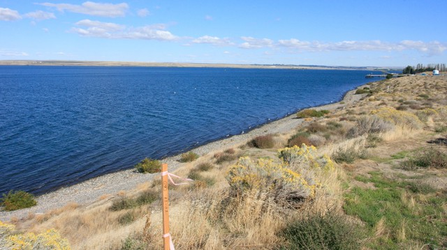 The Columbia River Intertribal Fish Commission says the white dots in the water are tribal fishing buoys and the wooden stake marks the beginning of the proposed Morrow Pacific coal export project site at the Port of Morrow in Boardman.