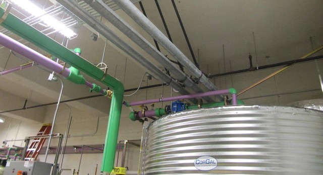 Rainwater flows through a purple pipe into a filter in the basement of the building. From here it can go onto the landscape to water plants or into toilets.