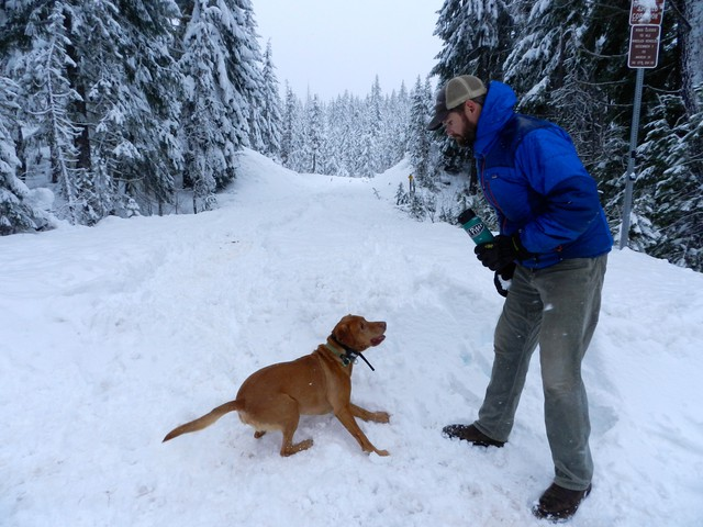 John Stevenson and his dog Apollo at Little Nash Sno-Park in Willamette National Forest.
