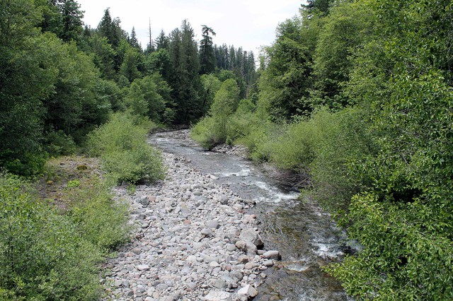 Lookout Creek in Oregon's H.J. Andrews Experimental Forest.
