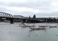 Dragon boats race on the Willamette River.