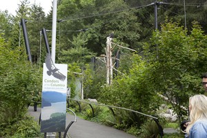 The entrance to the condor exhibit at the Oregon Zoo. The zoo has 38 condors – three on exhibit and the remainder in the Jonsson Center for Wildlife Conservation in Clackamas County.