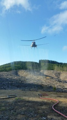 This photograph of a helicopter spraying herbicides is among hundreds whistleblower Darryl Ivy released after a month working for Applebee Aviation driving trucks and handling pesticides on Seneca Jones Timber Company sites.