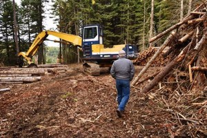 Landowners, Foresters Fight Fires By Treating Trees In