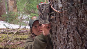 Trail cameras are used to locate fishers in the Washington Cascades.