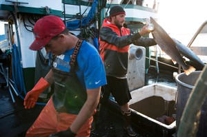 Nathan Cultee, right, and Nicholas Cooke, left, unload Atlantic salmon aboard the fishing vessel Marathon outside Home Port Seafoods on Tuesday in Bellingham, Washington.