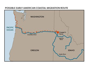 Ancient humans may have moved by boat down the coast, and turned left up the Columbia, following the river to its tributaries and their eventual home at Cooper's Ferry.