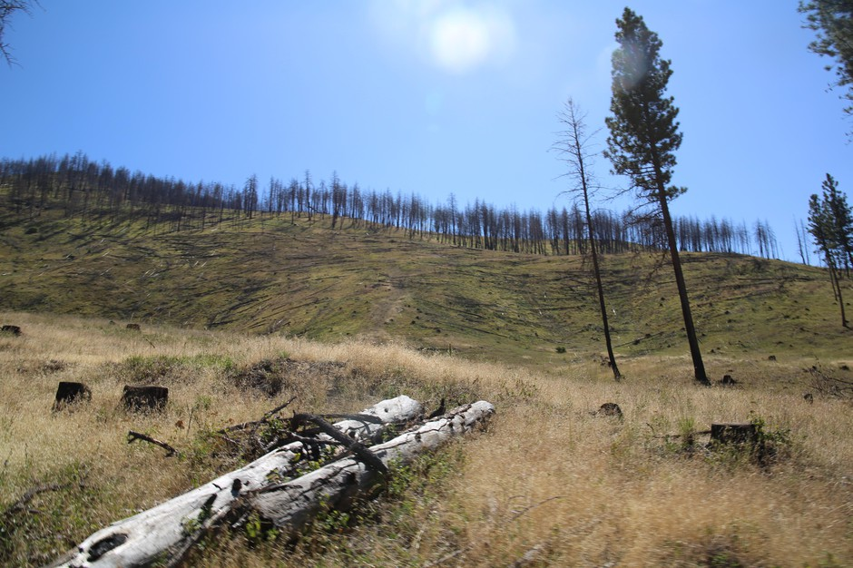 A view from Gordon Larson's ranch,whichburned in the 2015 Canyon Creek Fire.