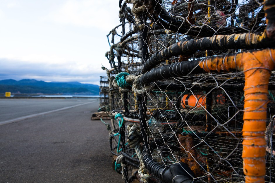 Idle crab pots are stacked high on the Port of Port Orford's dock.