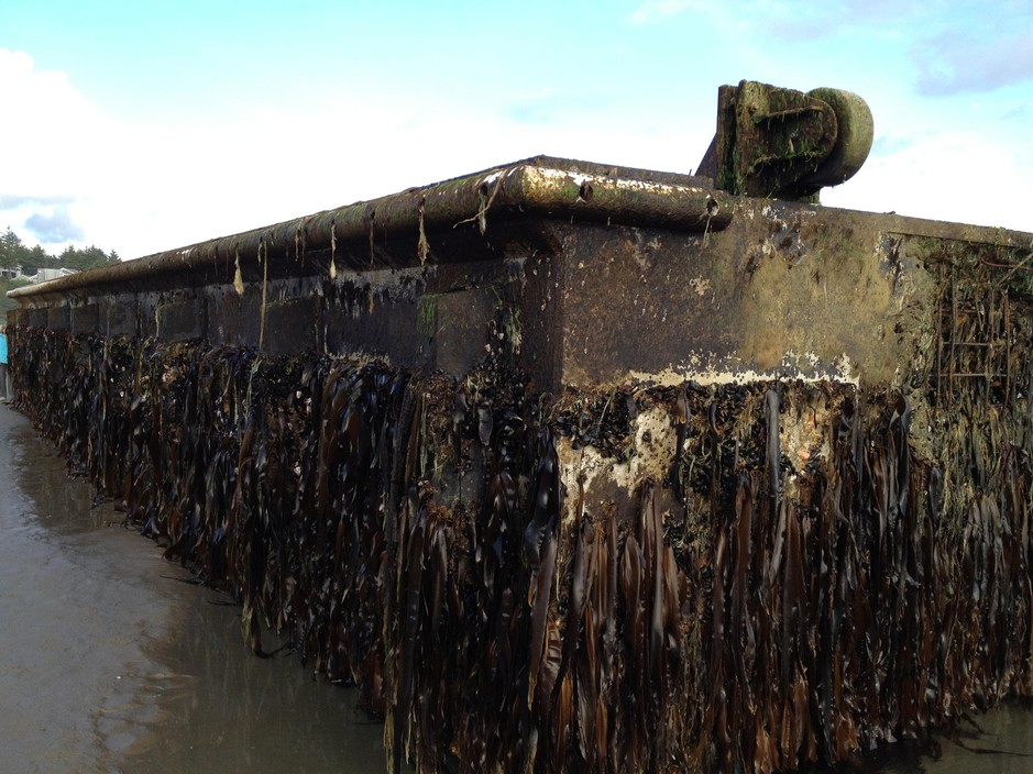 A dock that broke loose from Japan's Misawa fishing port during the 2011 tsunami showed up on Oregon's Agate Beach in June 2012.