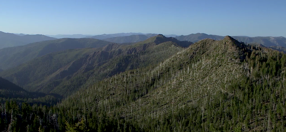 Beyond the borders of the Kalmiopsis Wilderness are as much as 200,000 acres of undeveloped forest.