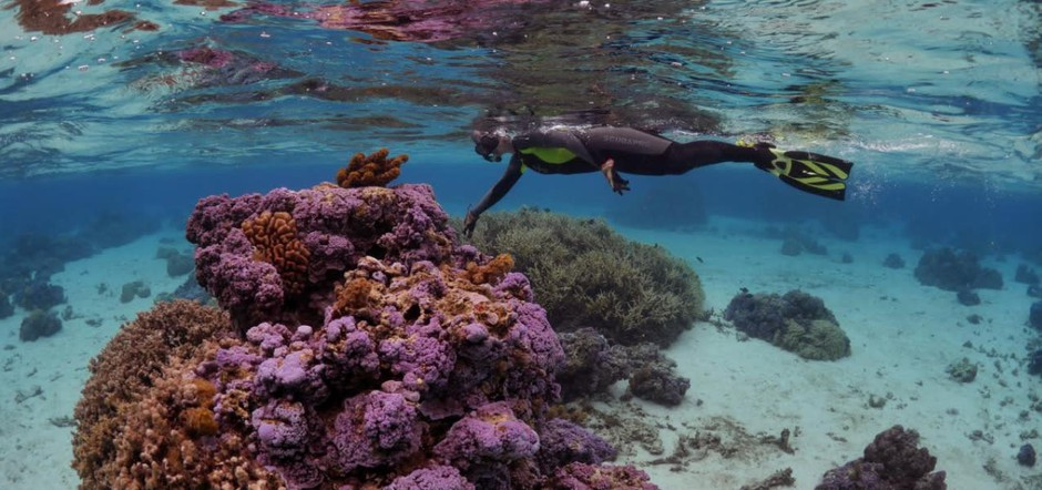 """""""Saving Atlantis,"""" a new film from Oregon State University focuses on the threats facing coral reefs, and the people who depend on them for their livelihoods."""
