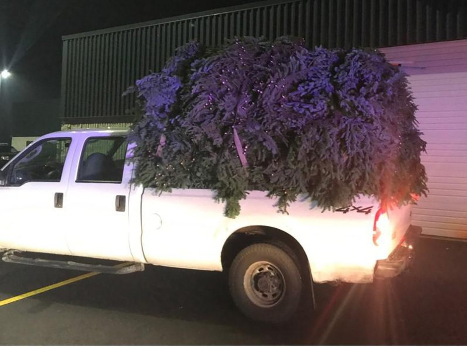 The Marion County Sheriff's office says 3,800 lbs of fir boughs were taken from the Willamette National Forest without a permit, for commercial holiday decorations.