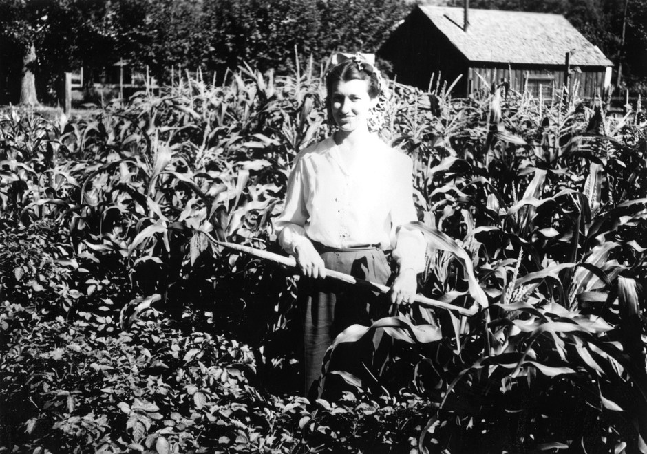 "A woman working in a ""Victory Garden"" in Lake County, Ore., in 1944."