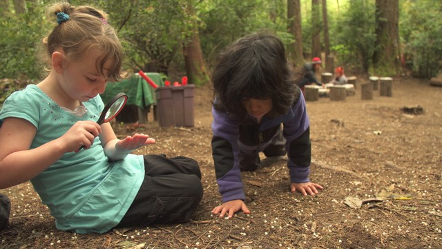 At Cedarsong Nature School, children attend class outside and they set the agenda for what they want to learn.