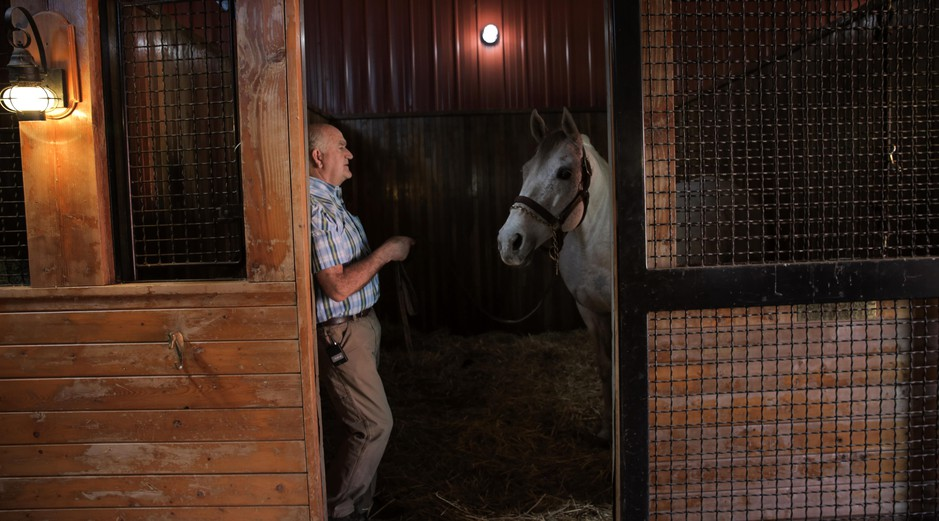 Jack Root and Giacomo, the 2005 Kenutcky Derby winner. His arrival made Jack's farm the first outside Kentucky to stand two derby winners at the same time.